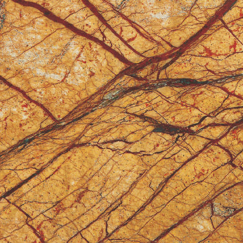 Indian Gold Rainforest Marble