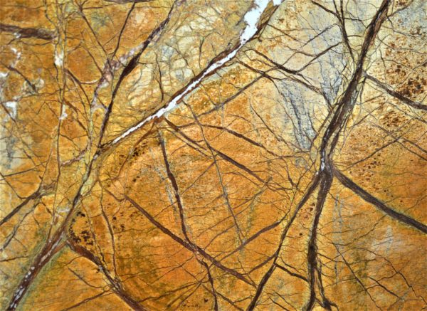 Indian Brown Rainforest Marble
